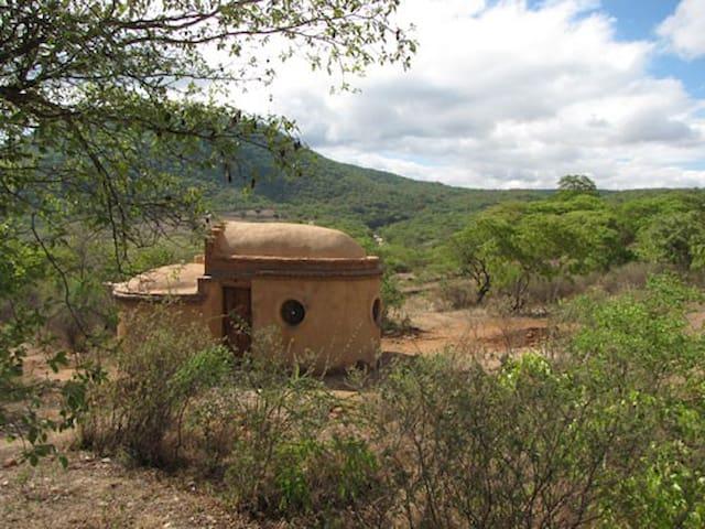 Amarula Cob Cottage