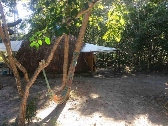 Loft na floresta e perto da praia.