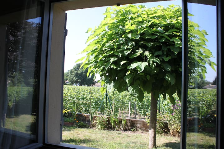 Room with a nice view on vineyards - Libourne - Casa