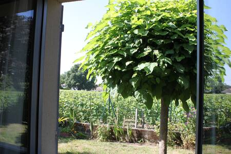 Room with a nice view on vineyards - Libourne