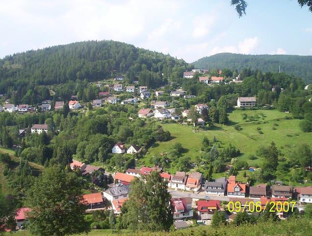 Ferienwohnung mit Garten im Harz EG