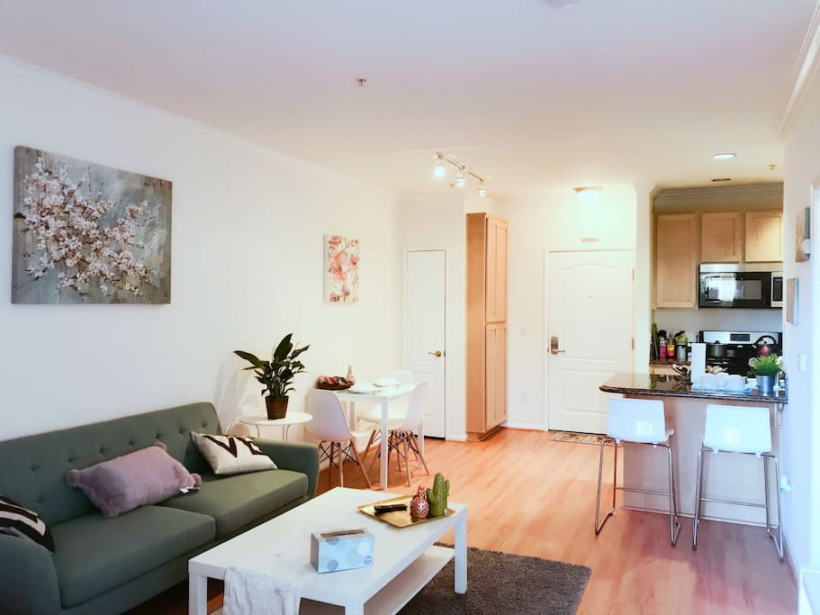 Luxury Beautiful Apartment In Downtown Los Angeles Apartments For Rent In Los Angeles