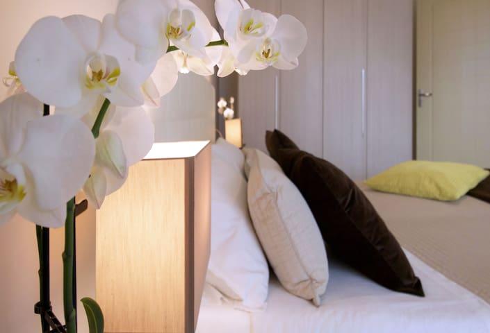 Appartamento Comfort  con due Camere da Letto