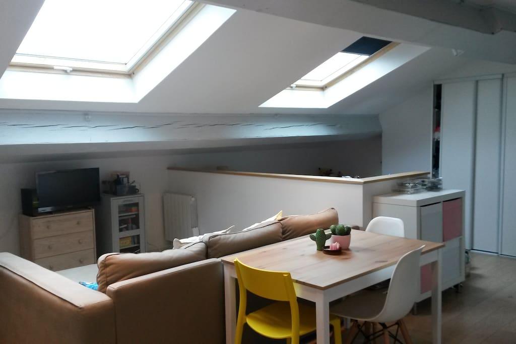 Deux grand velux, appartement très lumineux