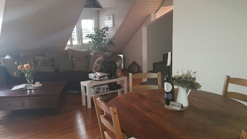 Lovely Apartment in Nature - Hausen am Albis - Apartment