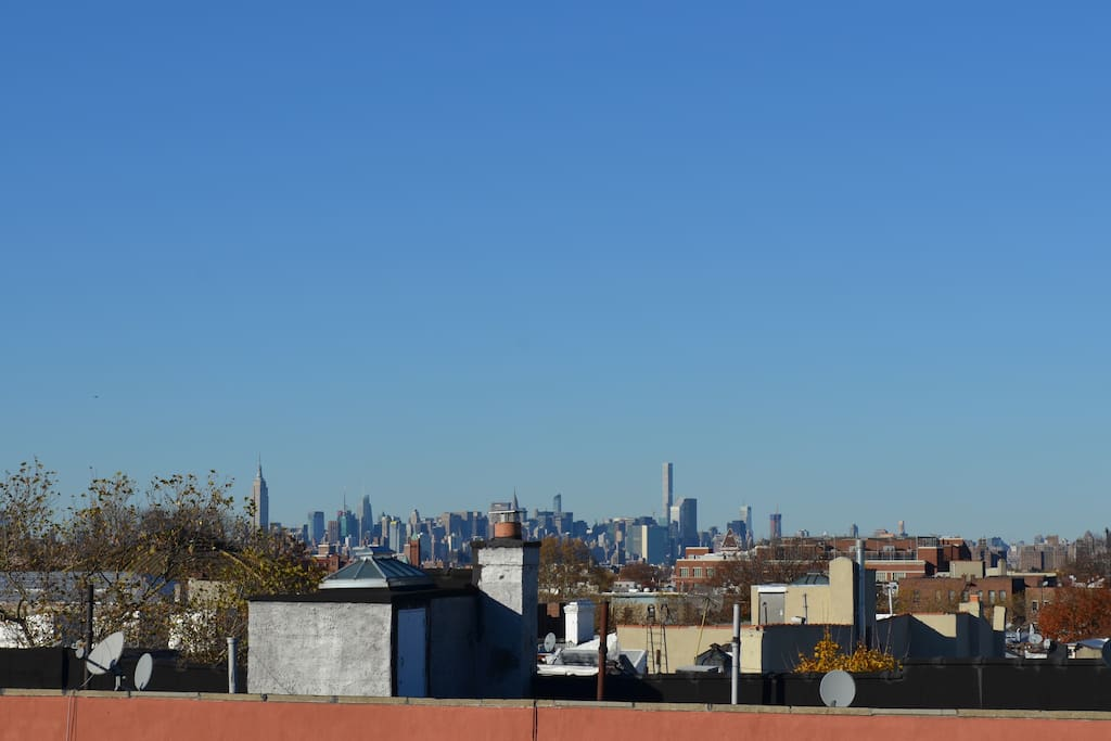 Roof Top - View of Manhattan. Community roof (NOT A PRIVATE ROOF). Empire State building on the left.