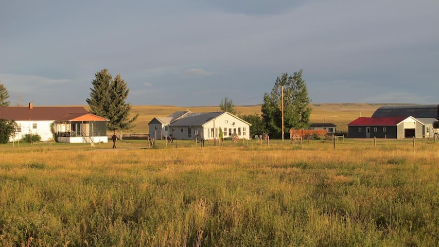 CY Ranch