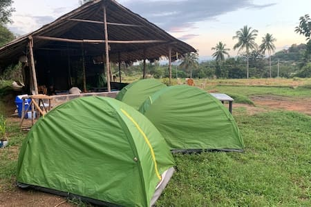 Roots river camping site hampi