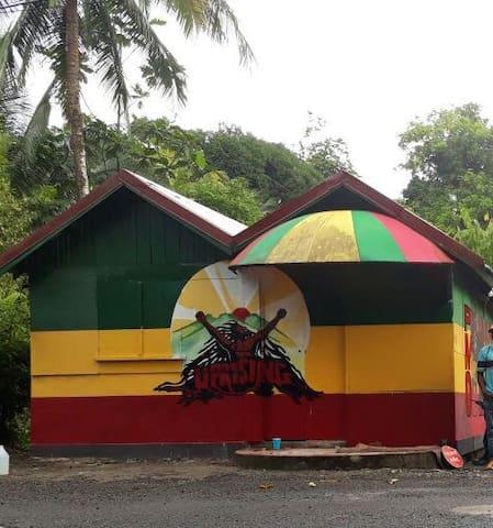 Welcome to Pieyaka's  Rasta Yard !!!