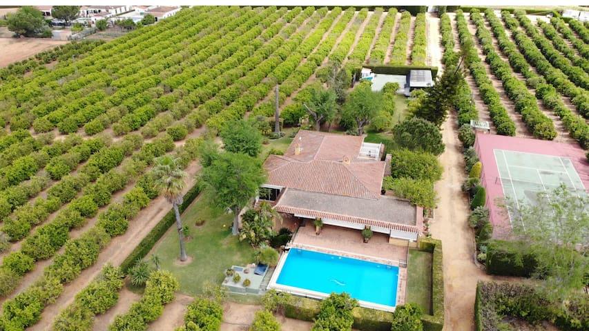 Casa de Campo con piscina junto a Sevilla