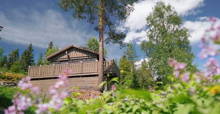 Hytte midt i naturen - 30 min. fra Oslo