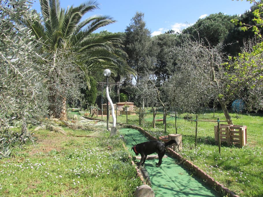 parte del giardino (totalmente privato).