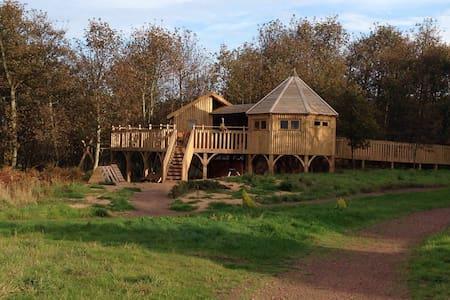 Treehouse near the beach in East Lothian, Scotland - Dunbar