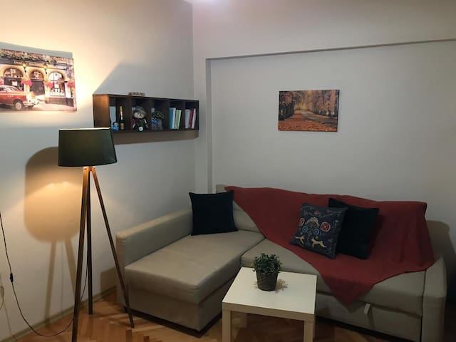 Cozy and cute apartment in the heart of the city!