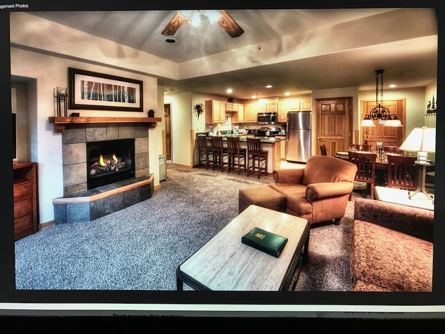 living area, fireplace, comfortable pull out couch