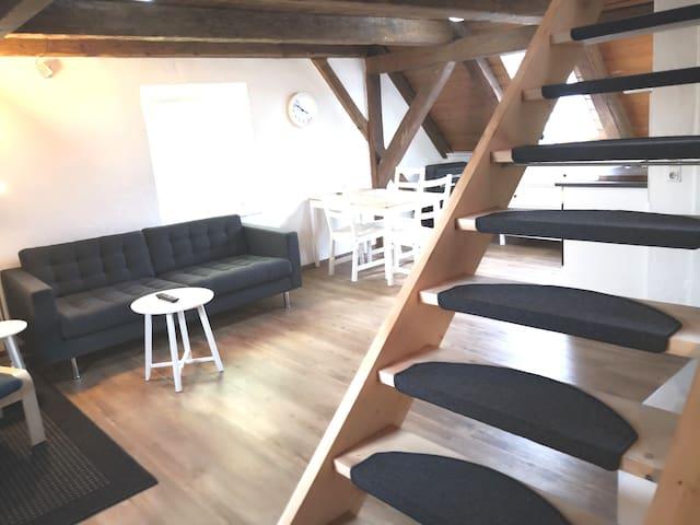Appartement 1856