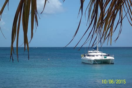 Cabin/s for rent on Luxury Yacht