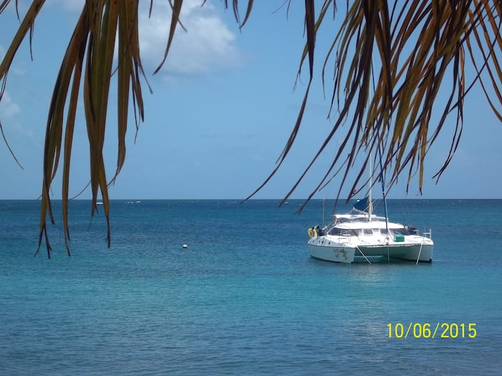 Cabin/s for rent on Luxury Yacht - Canouan