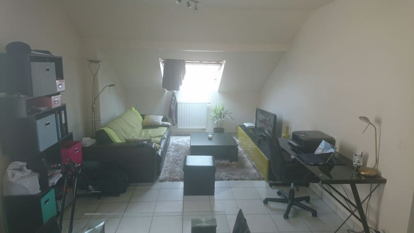 Bright mezzanine with big bed and convertible sofa - Annemasse