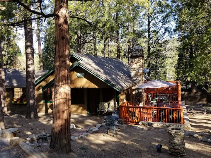 Rustic Cabin Old Idyllwild Charm! Dog friendly.