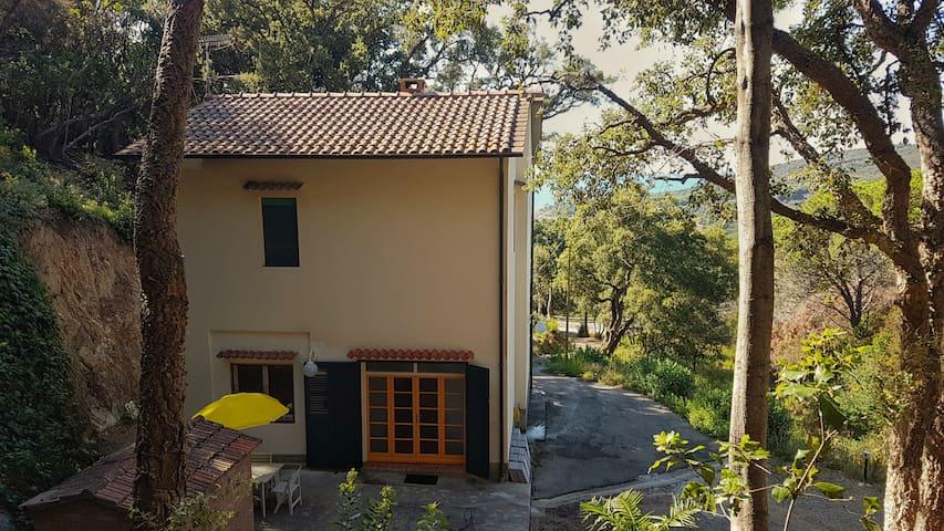 Villa ai Pini open space con parcheggio privato