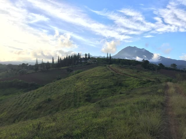 Mt Peniel Campsite