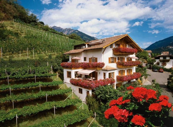 """Charming Apartment """"Etschtal-Immenhof"""" with Mountain View, Wi-Fi, Balcony & Shared Pool; Parking Available"""