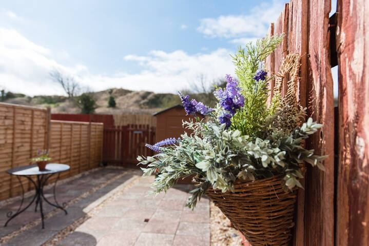 Sunny south facing garden with the dunes  outside of the back gate