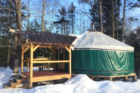 Yurt in the peaceful woods