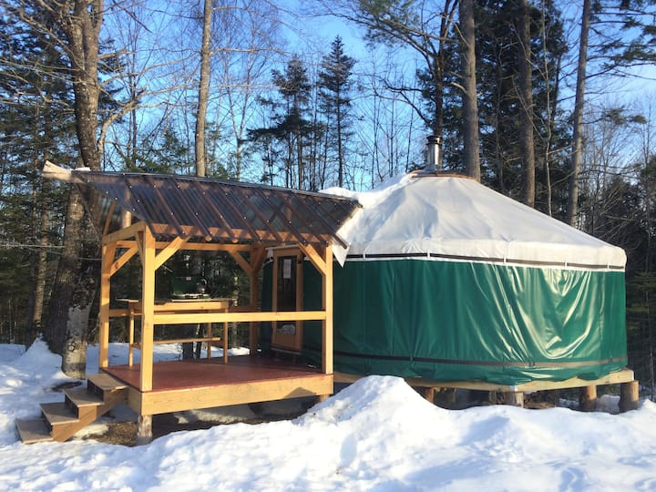 Cozy yurt in the Peaceful Woods