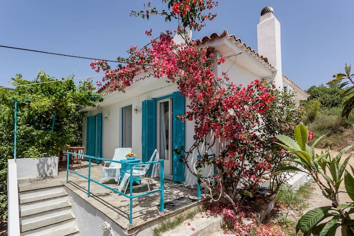 Thavma Summer House - Σκιάθος - Talo
