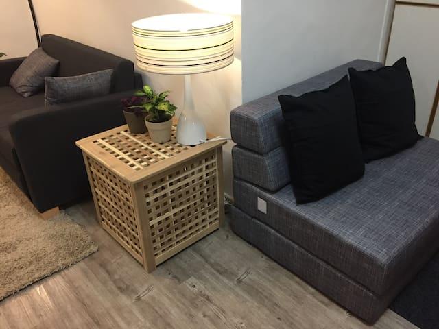 Double Sofa Bed Arrangement