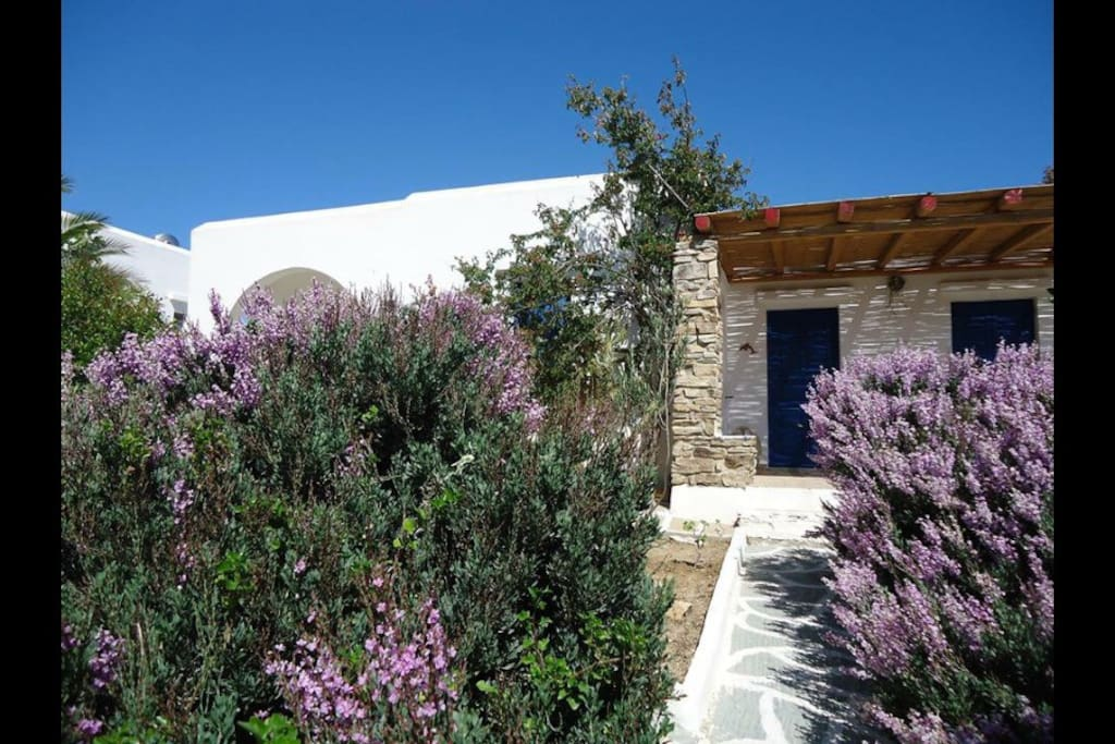 bungalow 60 m2 with bergola 15m2 cycladic houses greece for rent in antiparos egeo greece. Black Bedroom Furniture Sets. Home Design Ideas