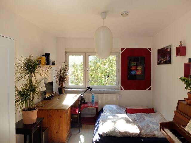 Ideales Zimmer nahe Hbf in der Mainzer Neustadt