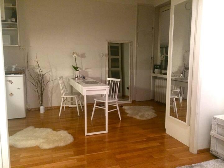 Cool apartment near Helsinki center
