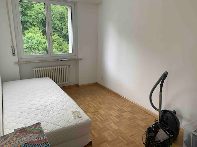 Generous apt in Dornach close to bus station