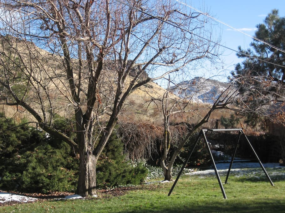 Our beautiful backyard has a view of Castle Rock and Table Rock.