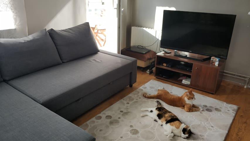 Misafirin kalacağı oda. fhireten Ikea koltuk çift kişilik yatağa dönüşebiliyor. Oda minik balkona açılıyor, kablo TV ye ve internete bağlı bir TV var odada.