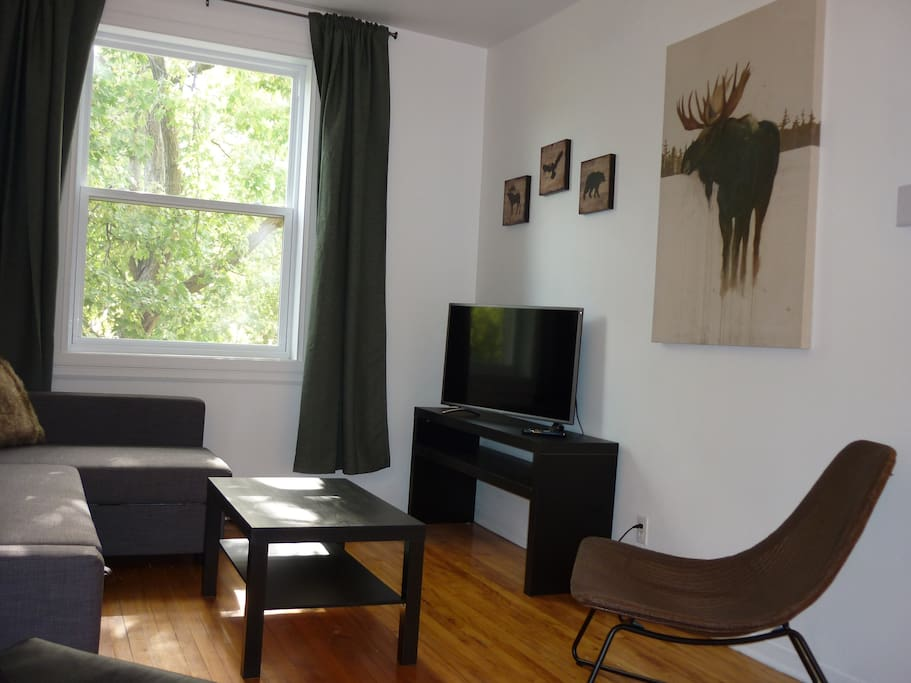 40'' HD flat screen SmartTV with free access to Netflix and YouTube + Wi-Fi internet access all around the apartment