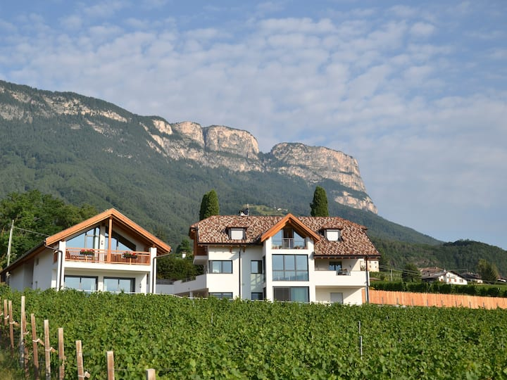 Oberberghof - Holiday Home with a View (Latemar)