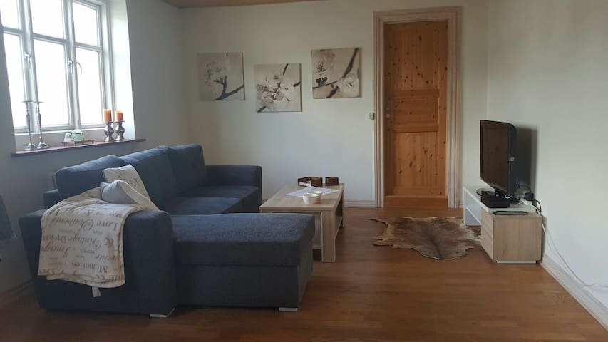 Deluxe apartment in large townhouse in Randers C