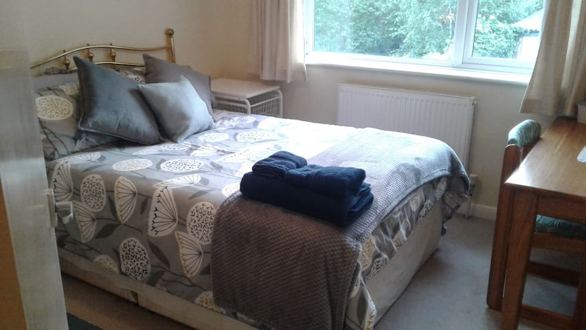 Gorgeous Double room 10min walk to Ally Pally!