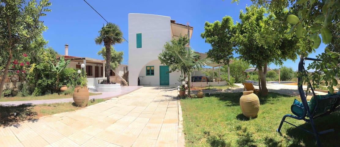 Casa D. Patrelakii