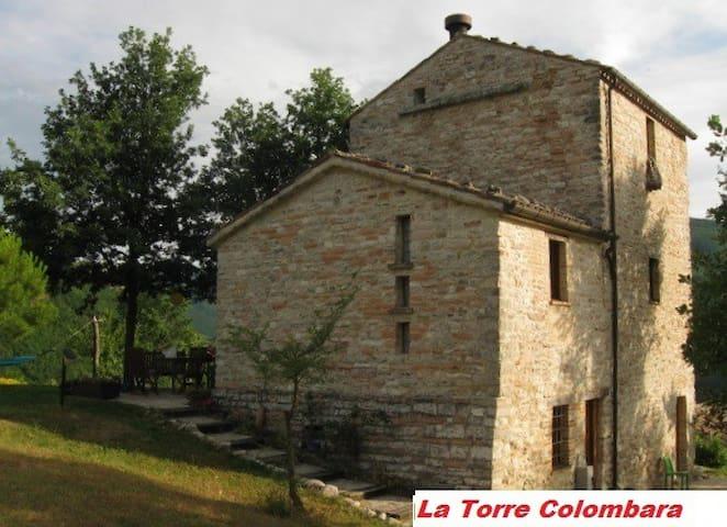 Torre colombara con piscina - Acqualagna - Villa