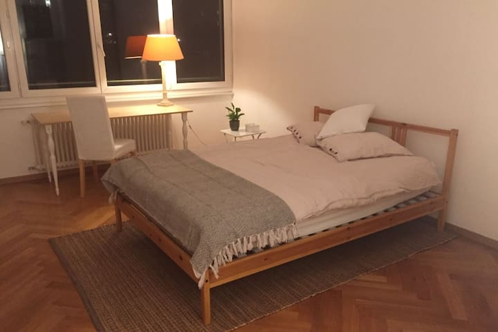 Beautiful room near the lake - Lausanne - Apartamento
