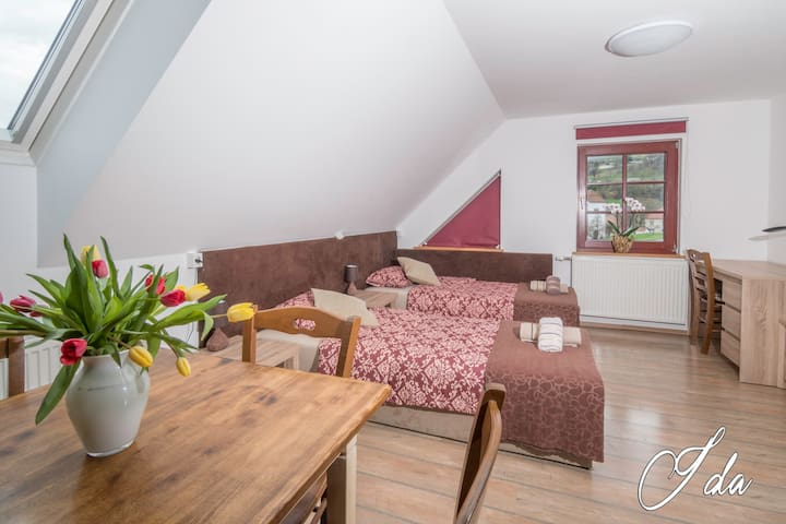 Apartment Ida is two floor apartment. this is the main space with 2 comfortable single beds which can be transformed into one double bed , TV, AC, free WI-FI with the view on Stična cistercian abbey