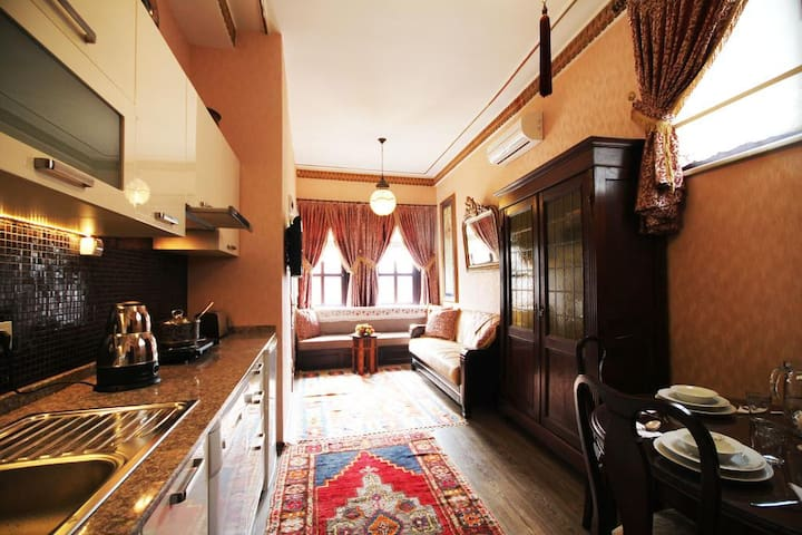Historic Furnished Apt in the Old City Sultanahmet