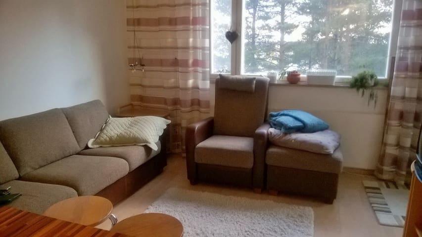 Olohuone. Sohvaan saa vuoteen (190cm)
