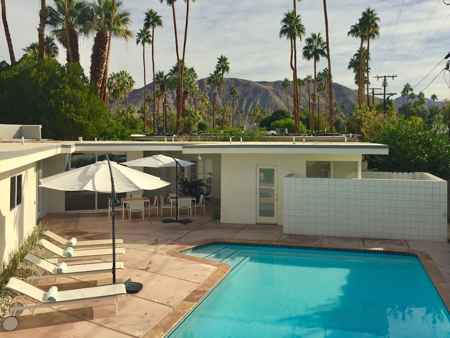 Palms and Pool