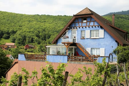 Alsace Winemaker home for wine and nature lovers - Reichsfeld - Таунхаус